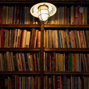 Litteratur-historie